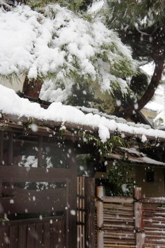 20120114 雪の日⑦