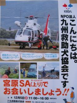 2_20101207003525.jpg