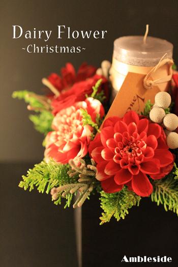 IMG_7501-Daily-Christmas.jpg