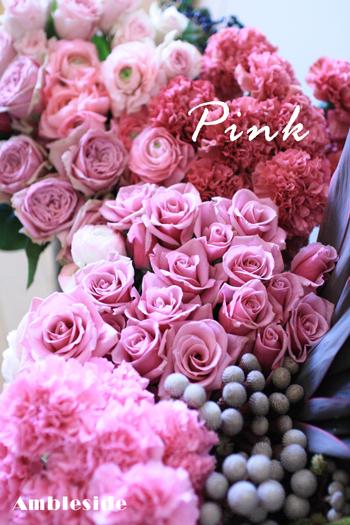 IMG_8085-Pink.jpg