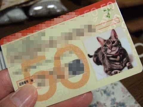 保険カード♪