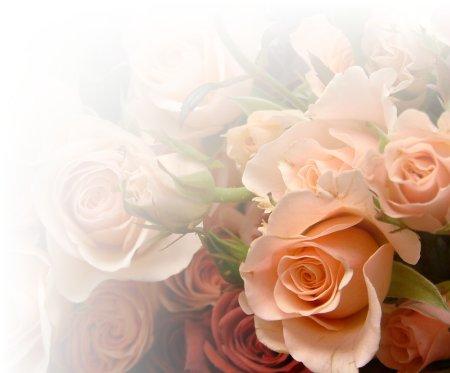 bg_roses