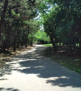 ふれあい公園2