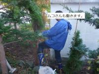 BLOG6470_20101108184250.jpg