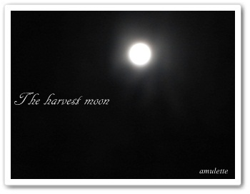 The hervest moon