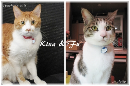 kina&fu2011-11