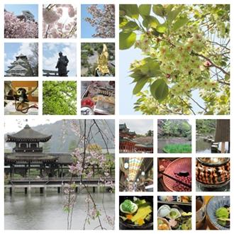 両親大阪京都旅行2012