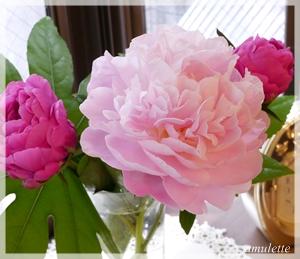 待夢のお花