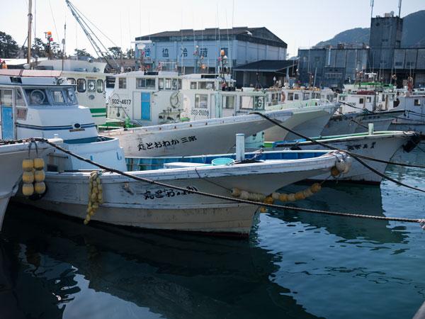 漁協直営 どんぶりハウス 船2