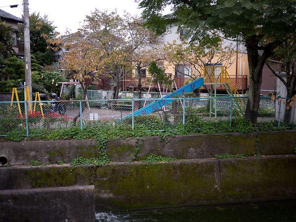 ひまわり公園3