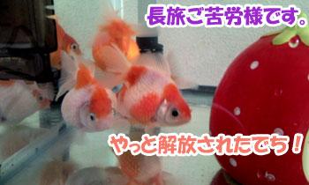 Photo0118.jpg