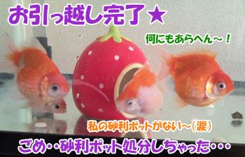 Photo0119.jpg
