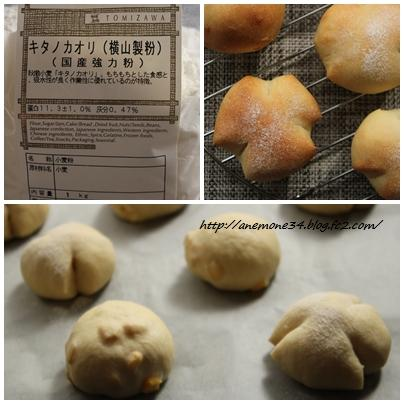 キタノカオリのパン2