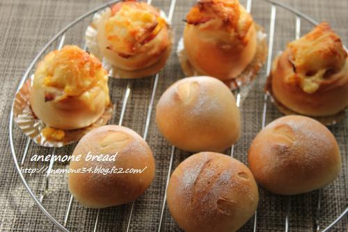 キタノカオリのパン5
