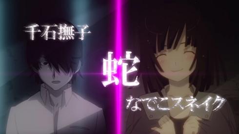 sm17887193 - 【Fate/Zero】化物語と偽物語で Blu-ray Disc CMパロ.mp4_000043016