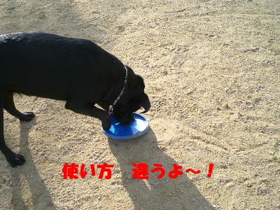 使い方 違うよ~!