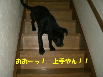おおーっ! 上手やん!!