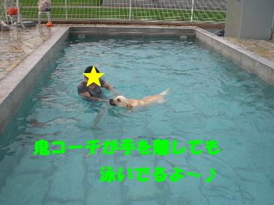泳いでるよ~♪