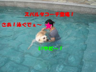 さあ!泳ぐでぇ~