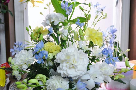 100209 035  花
