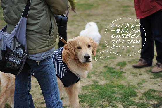 2010.03.28 266  えっこ