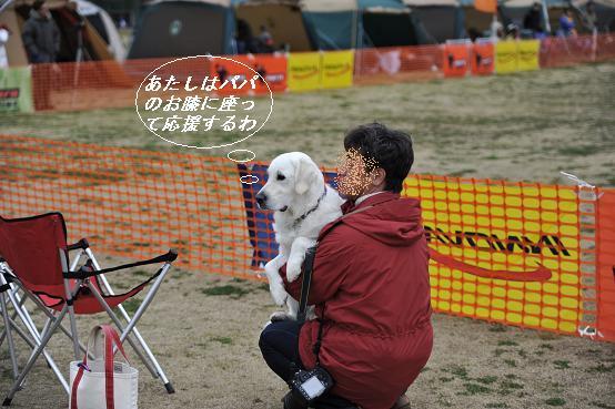 2010.03.28 288  らぶちゃん