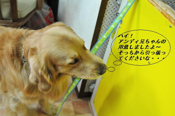 2010.04.01 053  ケニー