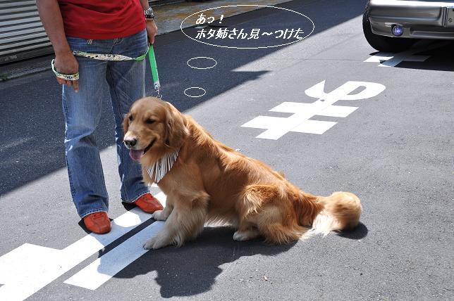 2010.0501 009  ケニー