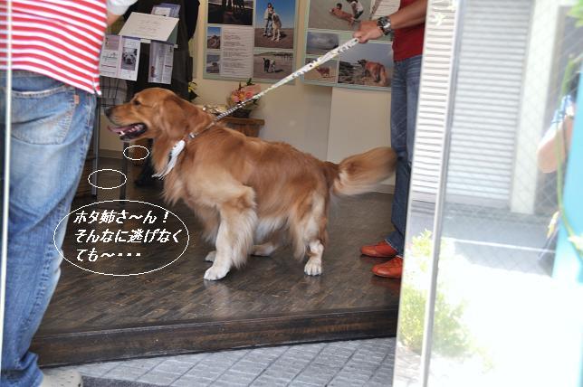 2010.0501 025  ケニー