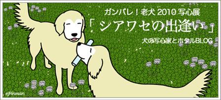 2010bana2  ホタパパ写心展