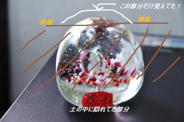 100505 113  ガラス玉