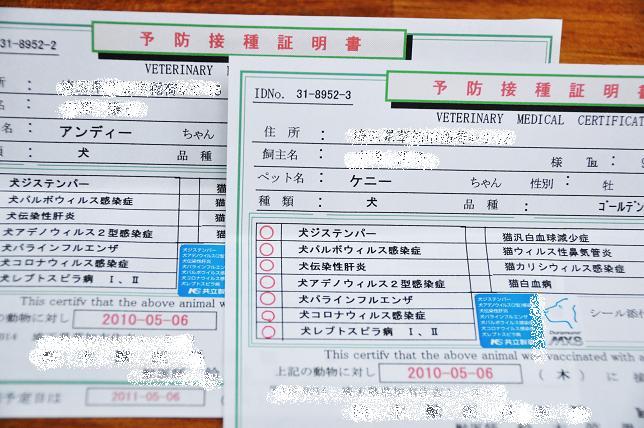 10 013  予防接種証明書