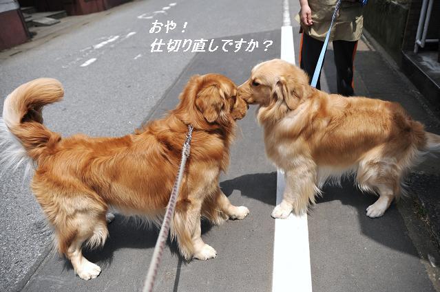 100528 066  ケニー&リオン