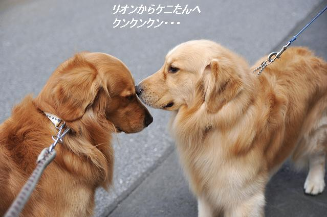 100528 081  ケニー&リオン