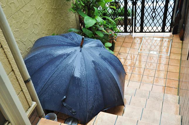 100705 004  雨