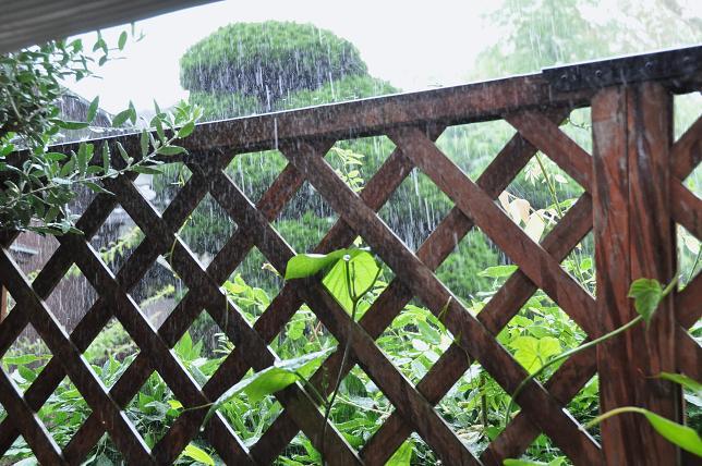 100705 005  集中豪雨