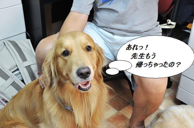 2010.08.06 028  ケニー