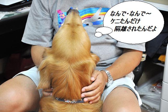 2010.08.06 031  ケニー