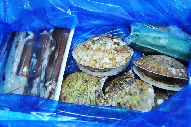 100903 031  魚貝類
