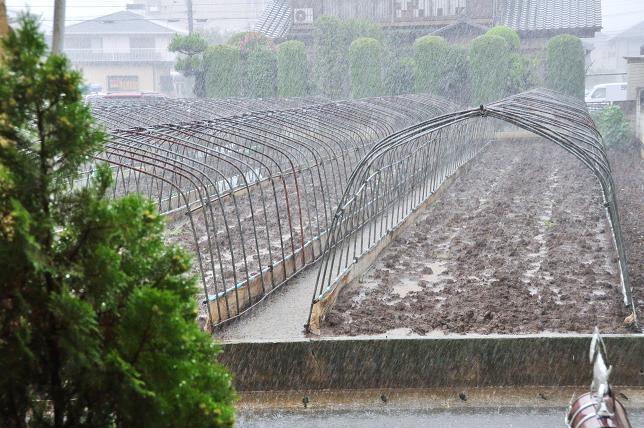 100908 003  台風