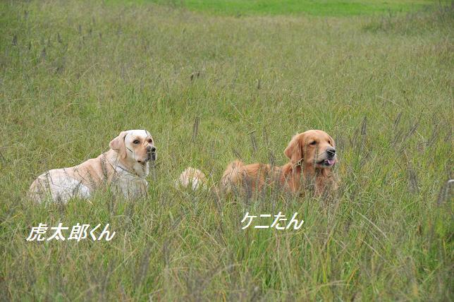 101015 226  虎太郎&ケニー