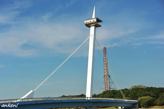 101116 380  葛西臨海公園