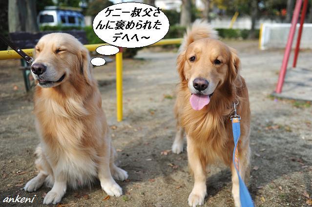 101130 031  リオン&ケニー