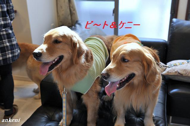 110109 159  ビ~ト&ケニー