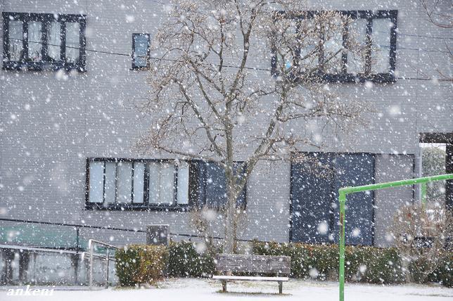 110116 131  雪景色