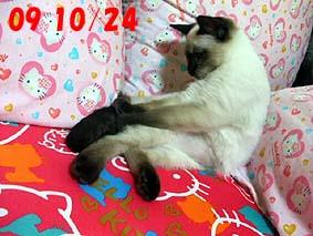 2009-10-24---1.jpg