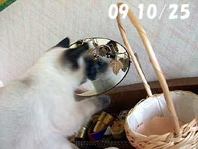 2009-10-25---1.jpg