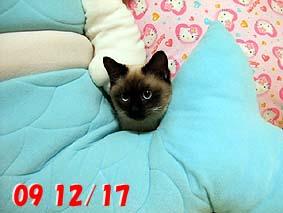 2009-12-17---1.jpg