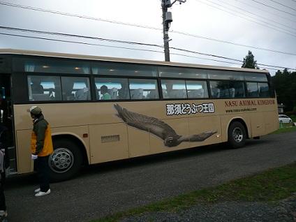 b20101016 27
