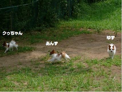 b20100813-10.jpg